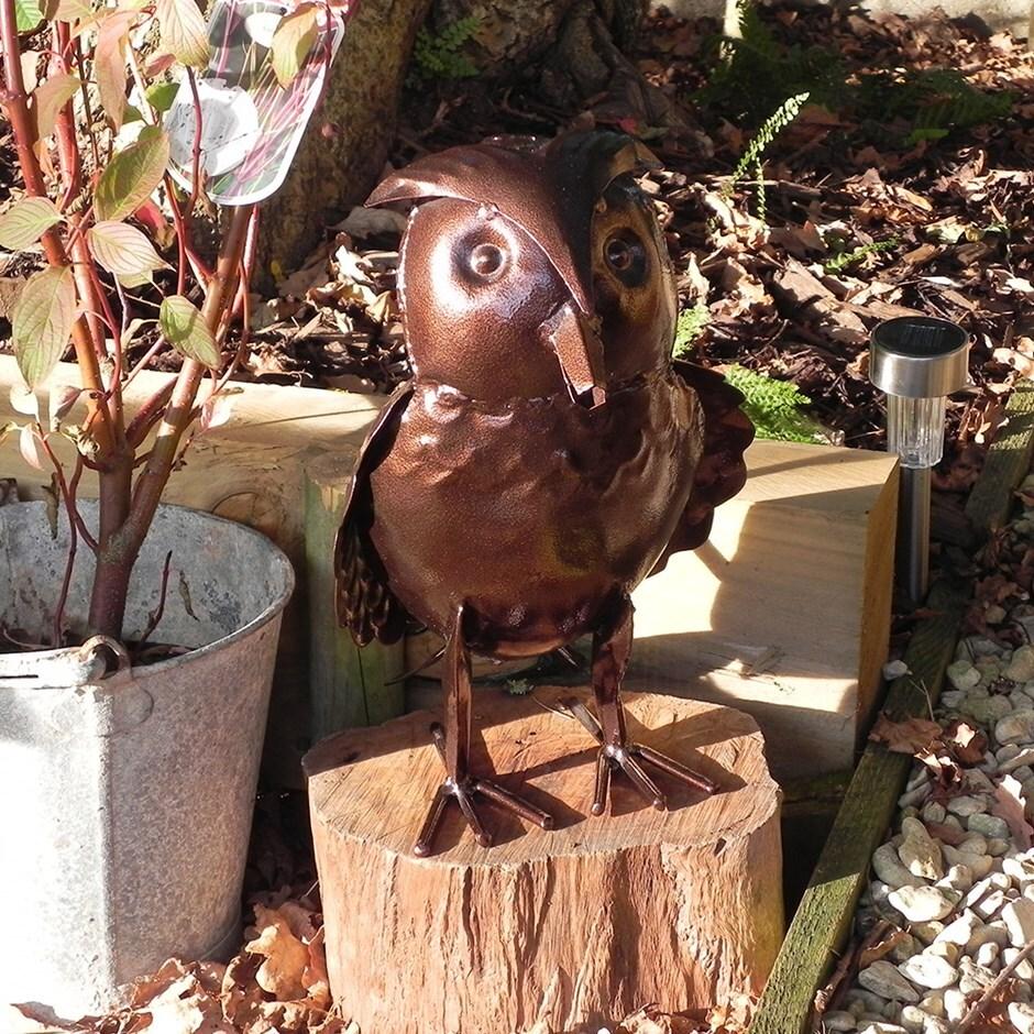 Buy Ornamental watering can - owl: Delivery by Waitrose Garden in ...