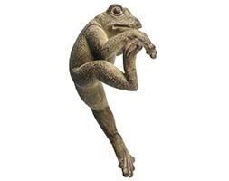 Pothanger - frog