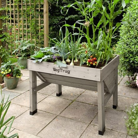 VegTrug small