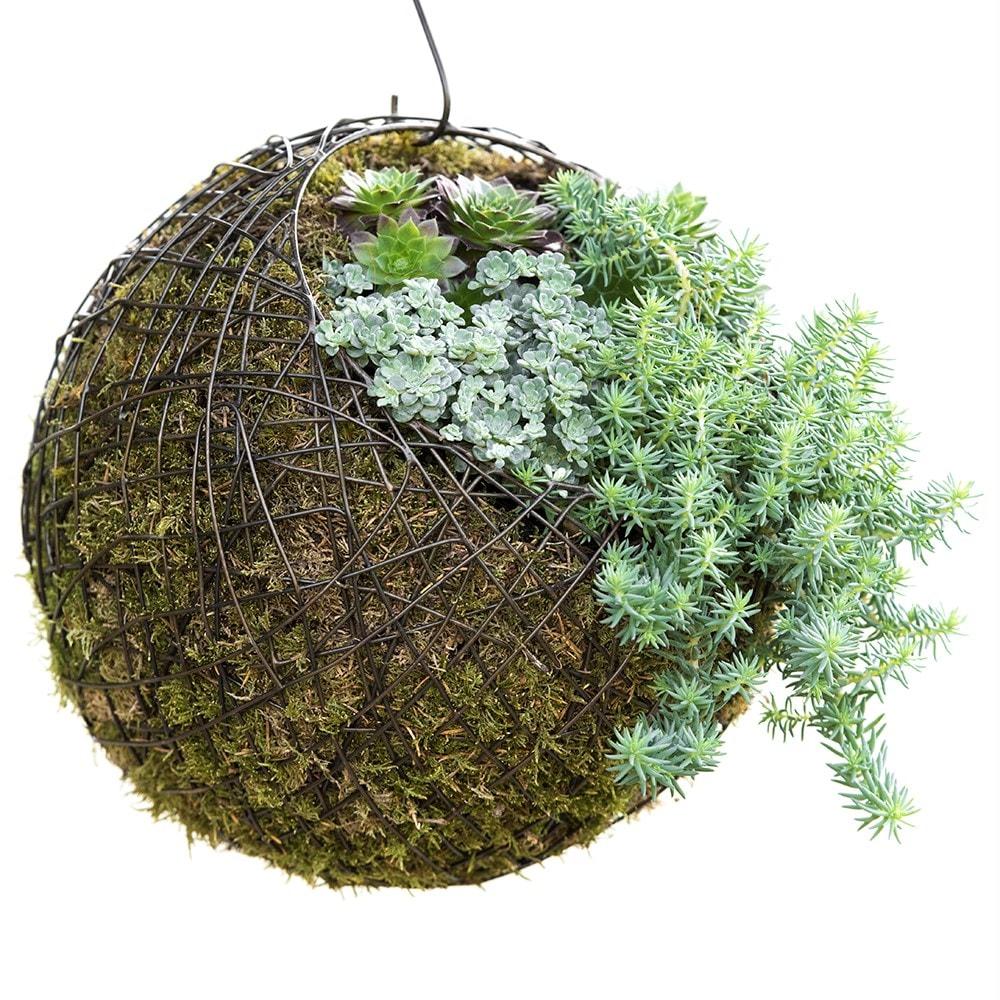 Medium Cluster With Hanging Wood Balls Puppen & Zubehör