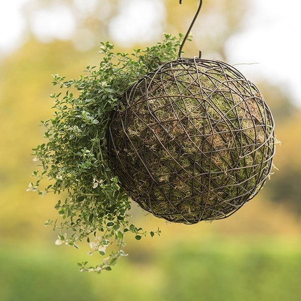 Hanging crazy wire ball