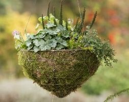 Large geo hanging basket