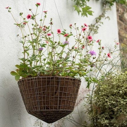Round net hanging basket