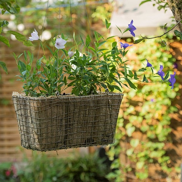 Rectangular net hanging basket
