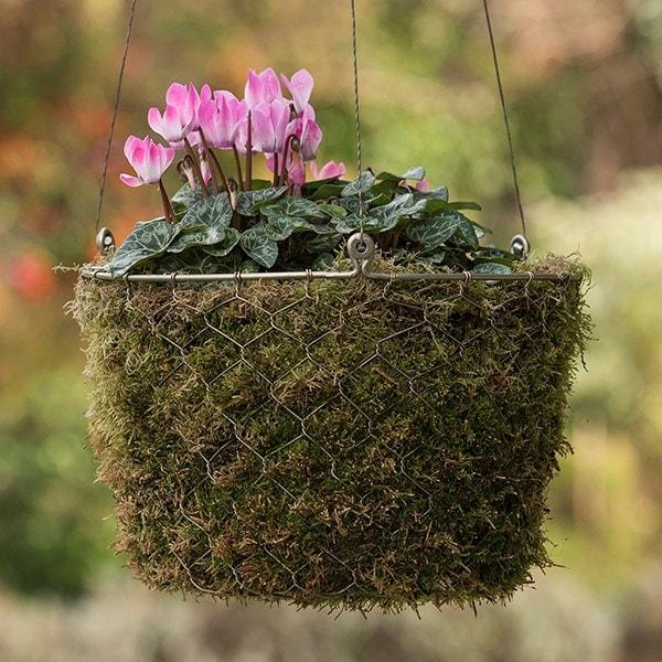 Hanging woven chicken wire basket