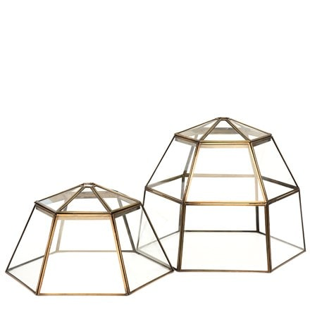 Lantern cloche with lid