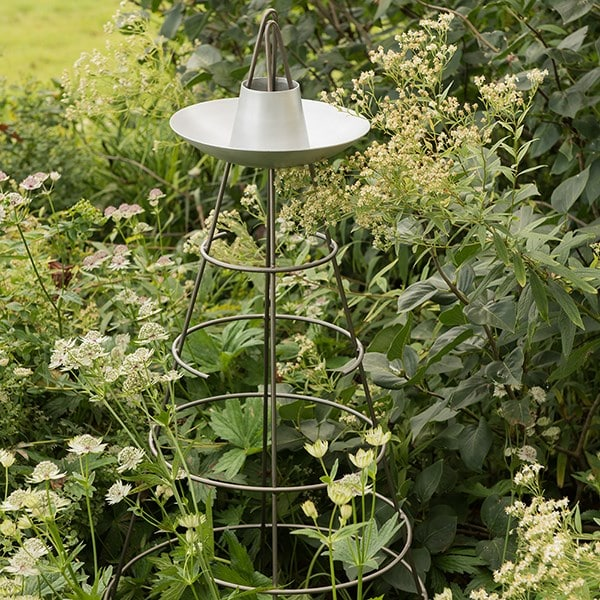 Bird bowl obelisk
