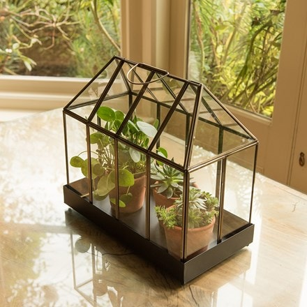 House terrarium