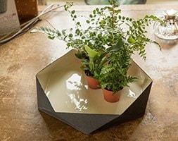Enamelled geo plant tray