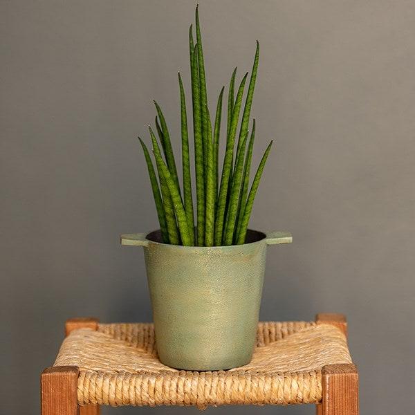 Cast aluminium pot cover with verdigris patina