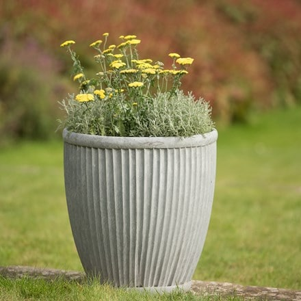 Tall galvanised dolly pot