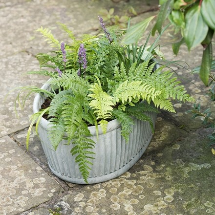 Galvanised dolly oval trough