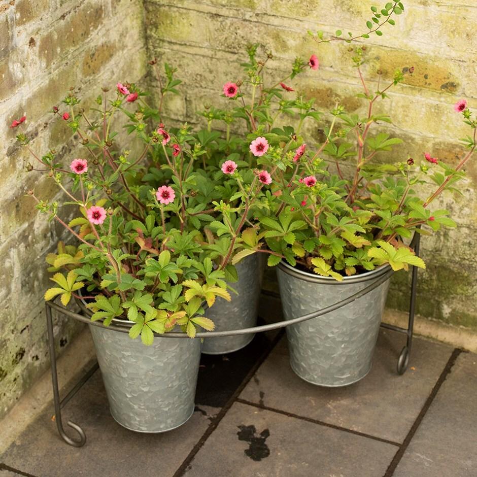 Corner pot stand with three deep galvanised pots