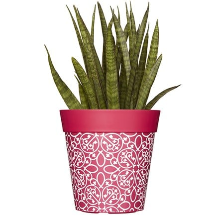 Pink lattice pattern pot