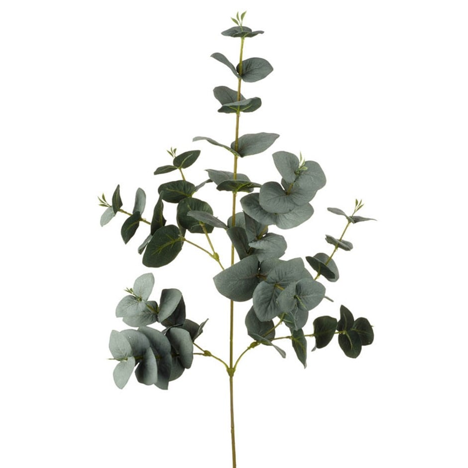 Buy Artificial Eucalyptus Leaves Delivery By Waitrose