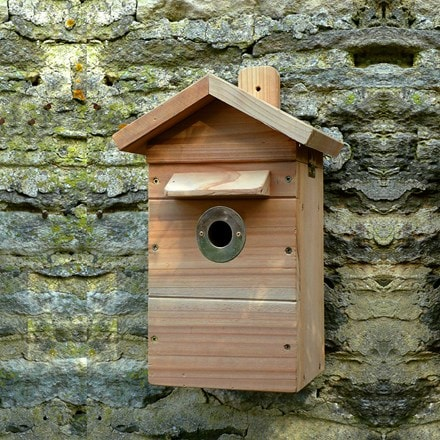 Wildlife camera system and camera nest box