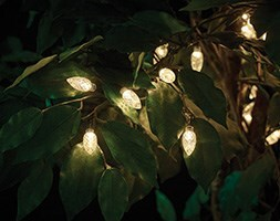 Dual power 50 extra large bulb string lights