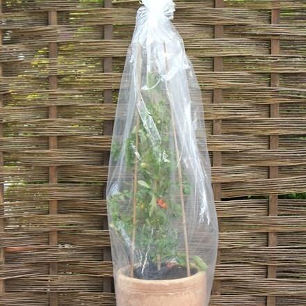 Tomato tubes 3 pack