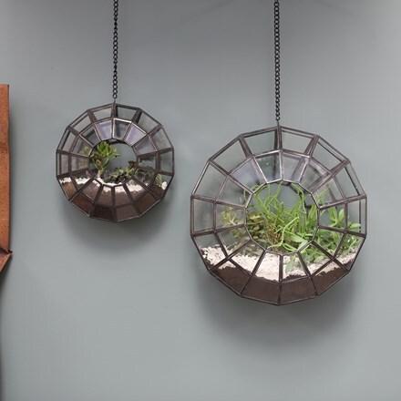 Pori hanging planter terrarium