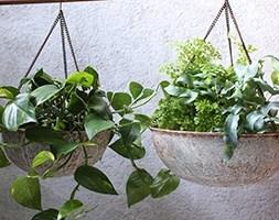 Abari round hanging planter