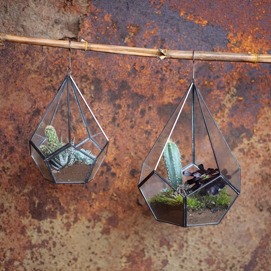 Manduri hanging planter terrarium