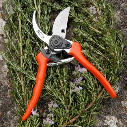 RHS Burgon and Ball bypass secateurs