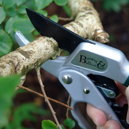 RHS Burgon and Ball ratchet pruner