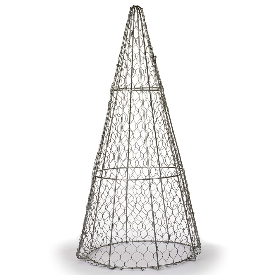 Buy Cone topiary frame: Delivery by Crocus