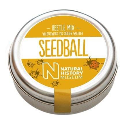 Seedballs for beetles