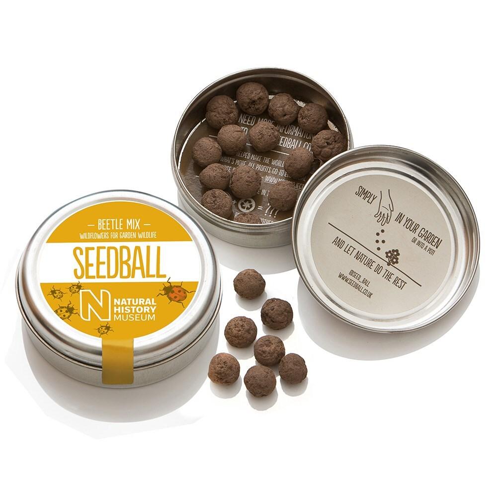 Seedballs for beetles
