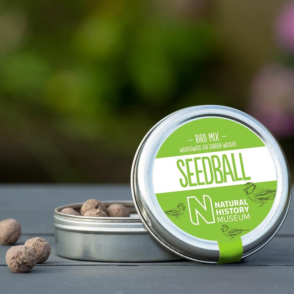 Seedballs for birds