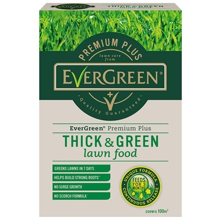Evergreen premium plus thick and green lawn food