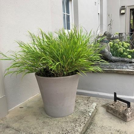 Planter vaso conico primitivo grafite