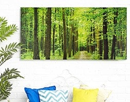 Outdoor canvas forest path