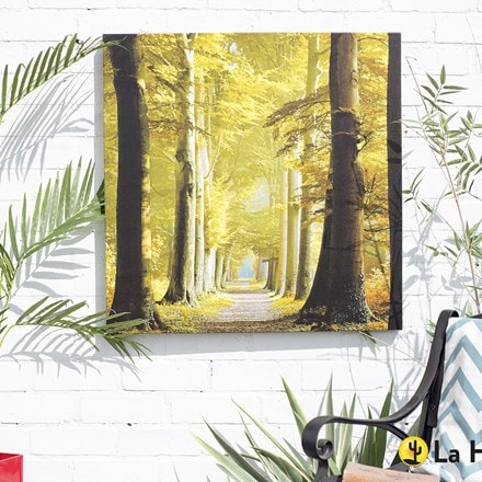 Outdoor canvas woodland path