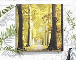 Outdoor canvas woodland path