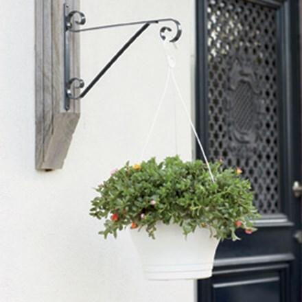 Corsica hanging basket white
