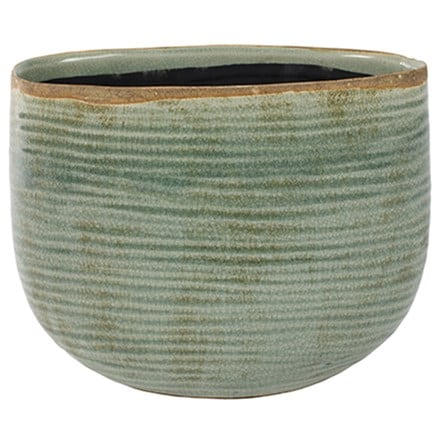 Como oval planter mint
