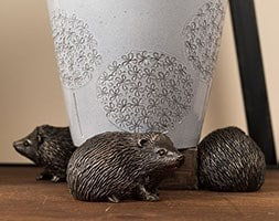 Potty feet bronze hedgehog