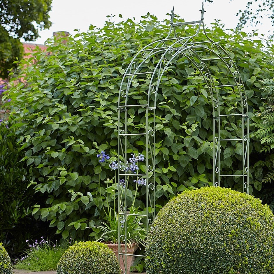 Buy Boutique Garden Arch Delivery By Crocus