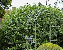 Boutique garden arch