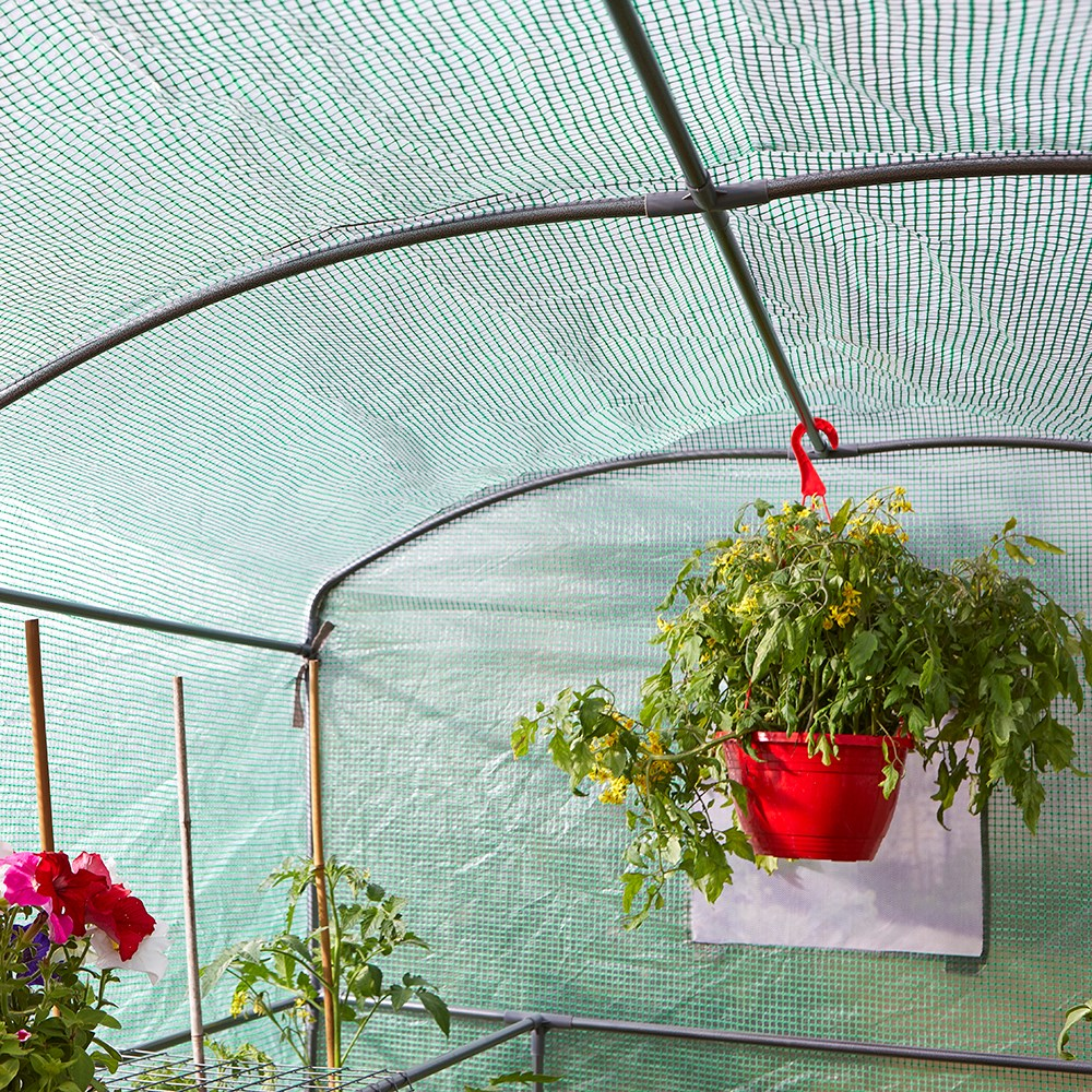 Buy Greenhouse grozone max: Delivery by Waitrose Garden in ...
