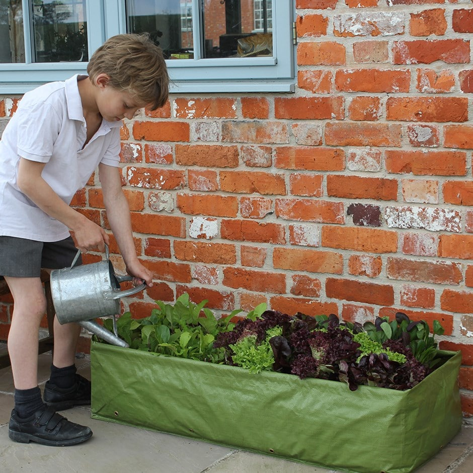 Multipurpose reusable growbag planter