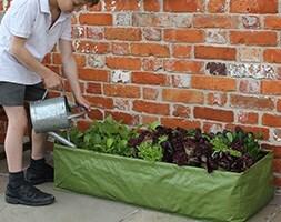 Multipurpose reusable growbag planter