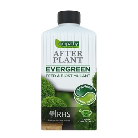 Empathy liquid after plant evergreen
