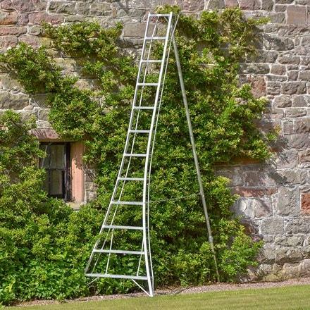 Standard tripod ladder