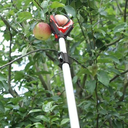 Darlac telescopic fruit picker