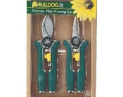Mini pruning set - green
