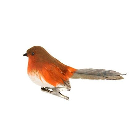 Feather robin on clip
