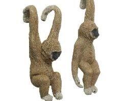 Pothanger - gibbon